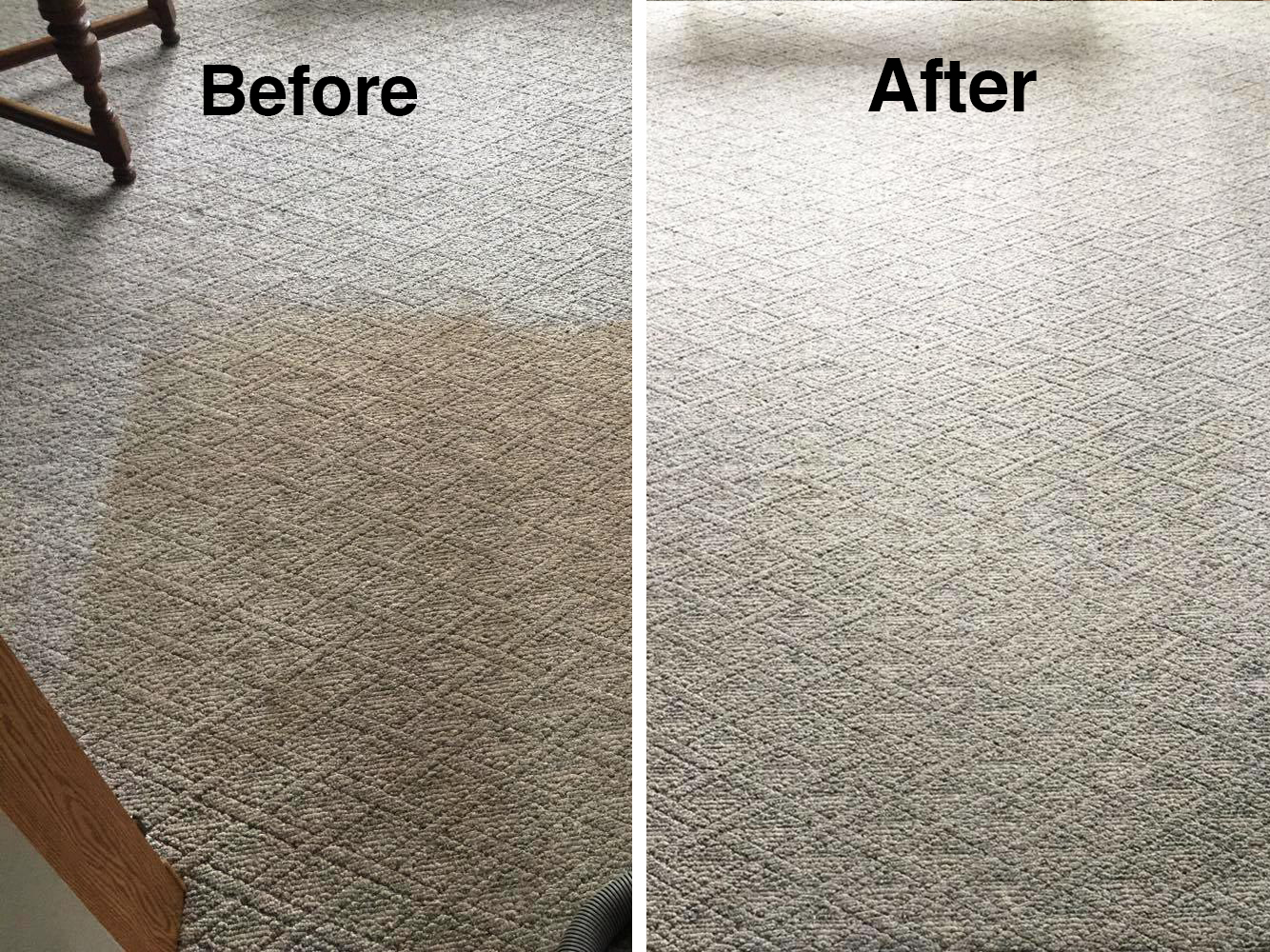 jakes carpet and upholstery cleaning results 4