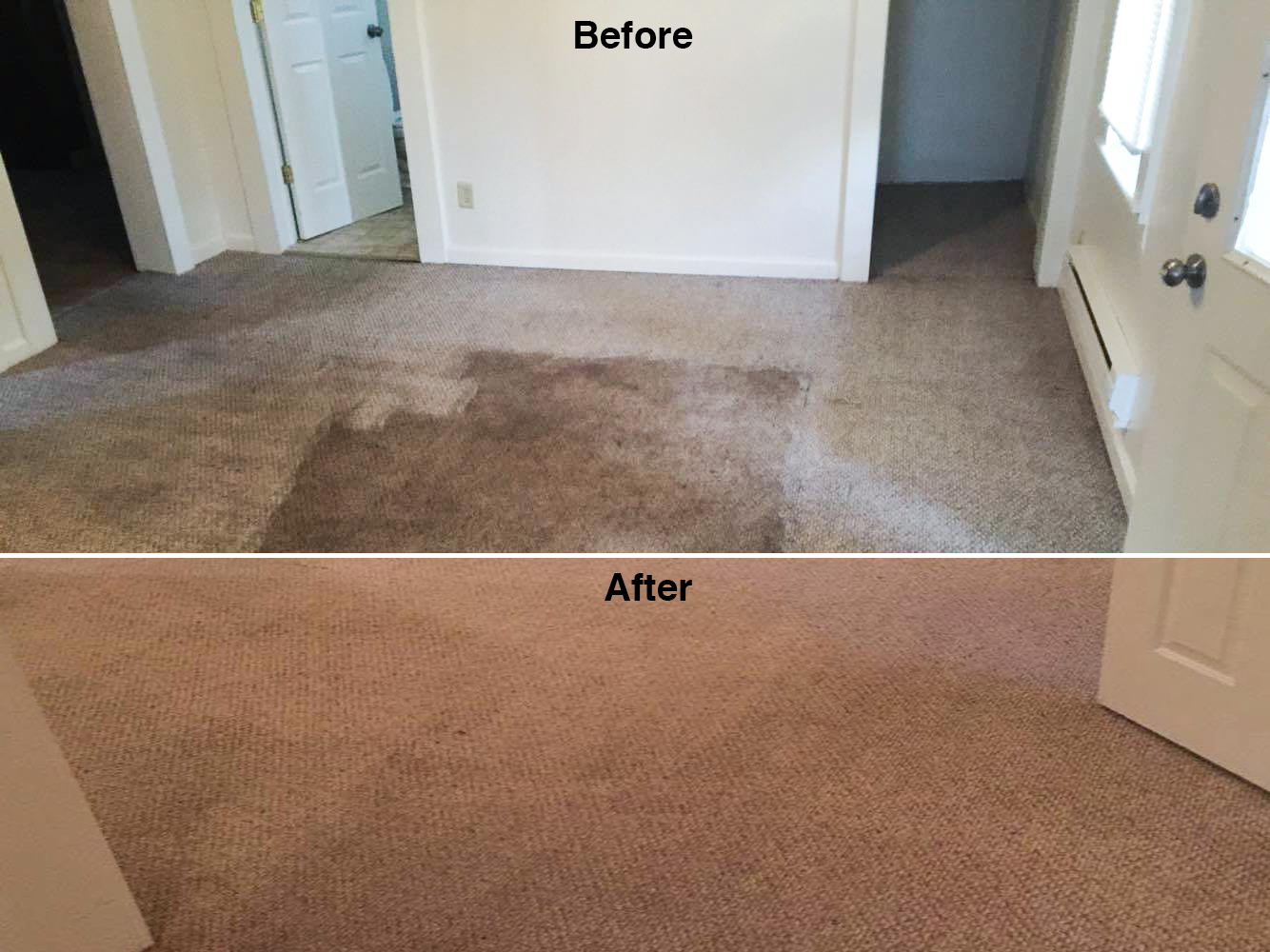 jakes carpet and upholstery cleaning results 8