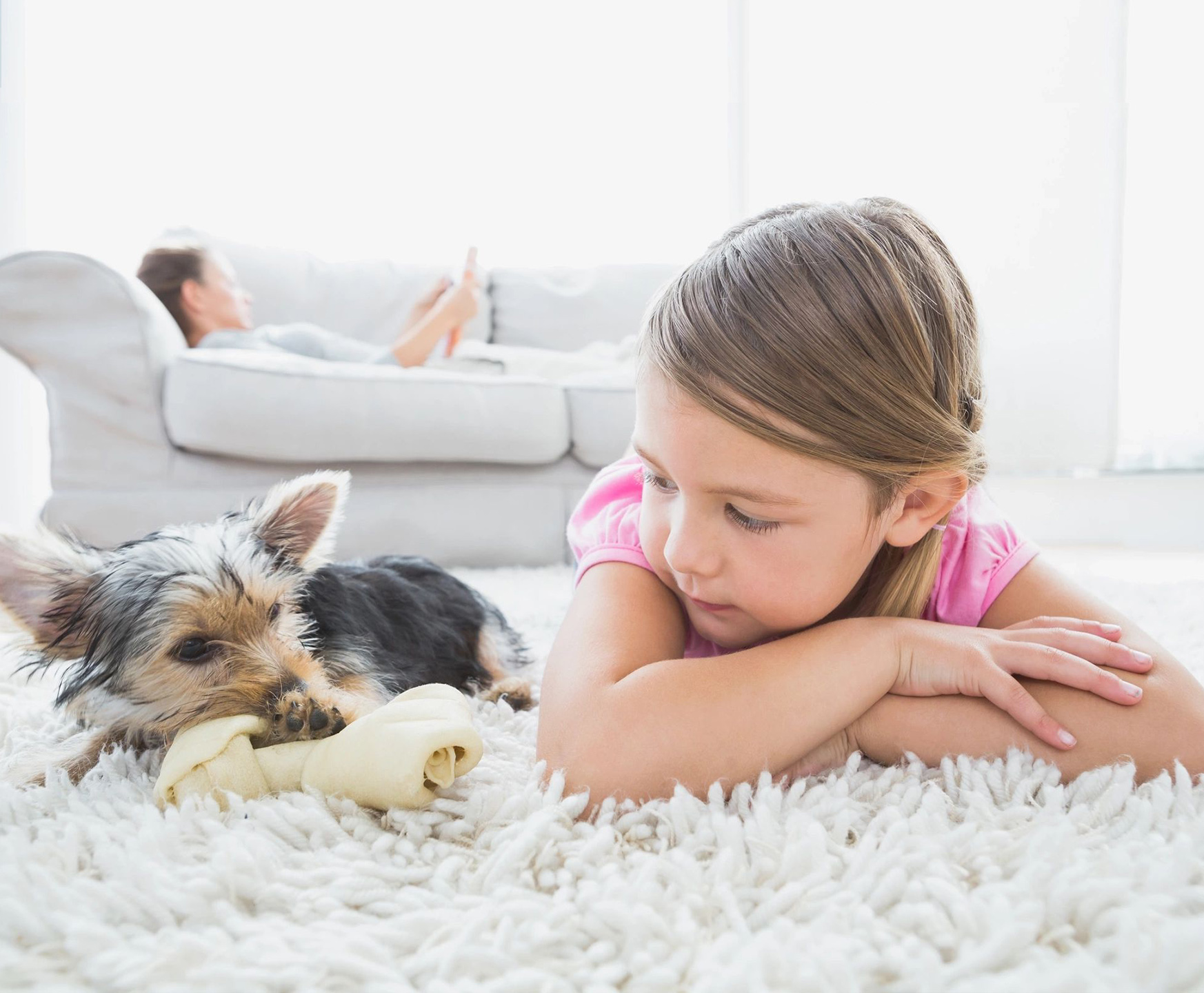 jakes carpet and upholstery cleaning safe for children and pets