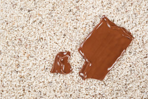 removing chocolate jake's carpet and upholstery cleaning